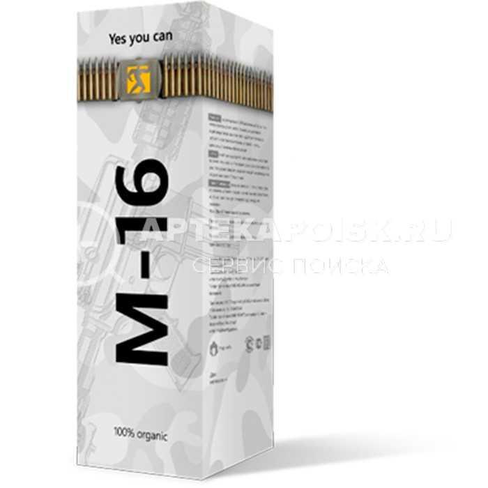 М-16 в Вологде